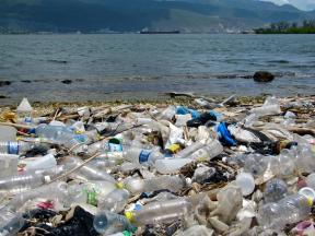 Pollution from single-use plastics and other sources has become a growing concern for Jamaica, as elsewhere in the world.