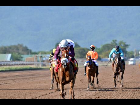 LADY BLUE (Omar Walker) wins the Hotline Stakes at Caymanas Park yesterday.
