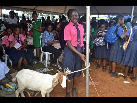 Eleven-year-old Sonilia McLean holds the goat she caught as a prize at Minard.