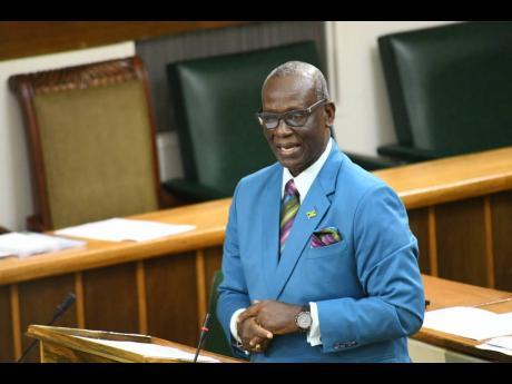 Desmond McKenzie, minister of local government.