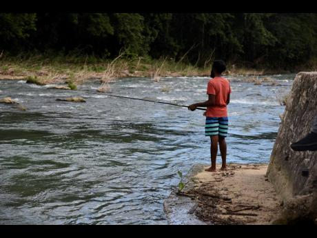 A lot of people living nearby Rio Cobre depend on the river for food. There are concerns about high pollution levels, a large part of it is blamed on the bauxite mining effulent.