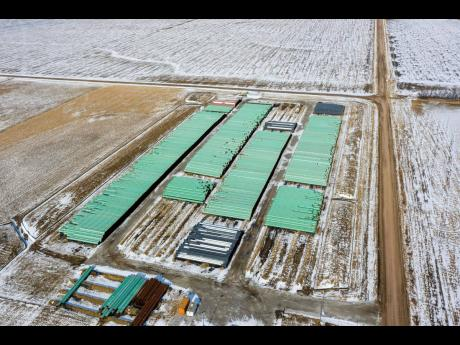 AP In this December 18, 2020 photo, pipes to be used for the Keystone XL pipeline are stored in a field near Dorchester, Nebraska.