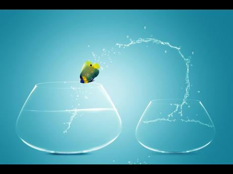 A graphic representation of an Angelfish jumping to big bowl, symbolic of taking a leap of faith, of opportunities, and overcoming challenges among other things